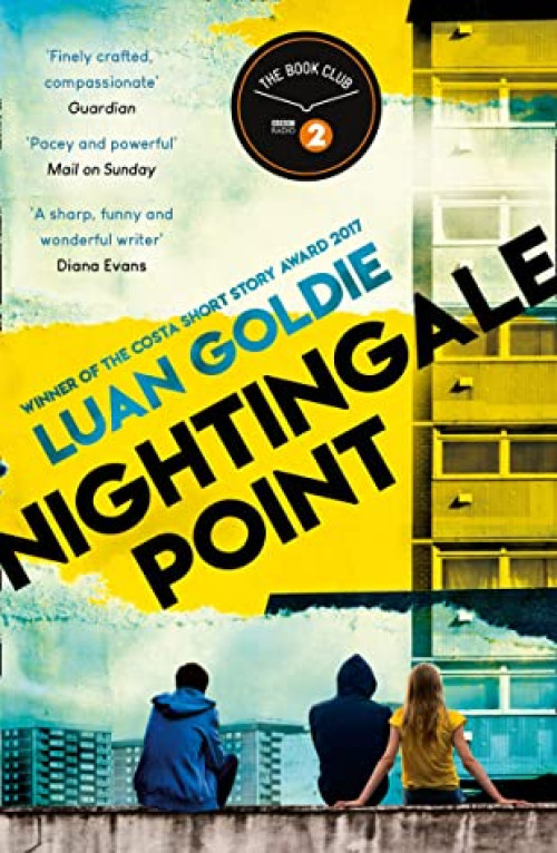 Nightingale Point av Luan Goldie